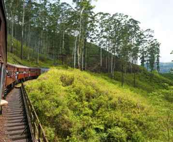 Train Nuwara Eliya