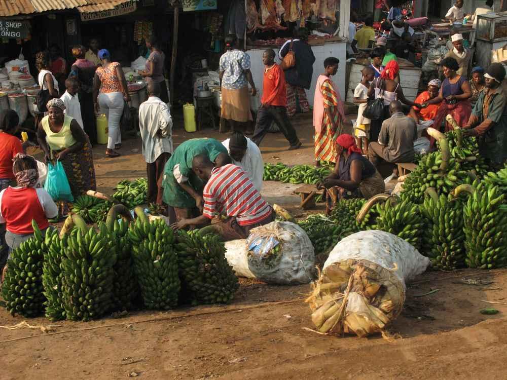 bananas-market-kampala