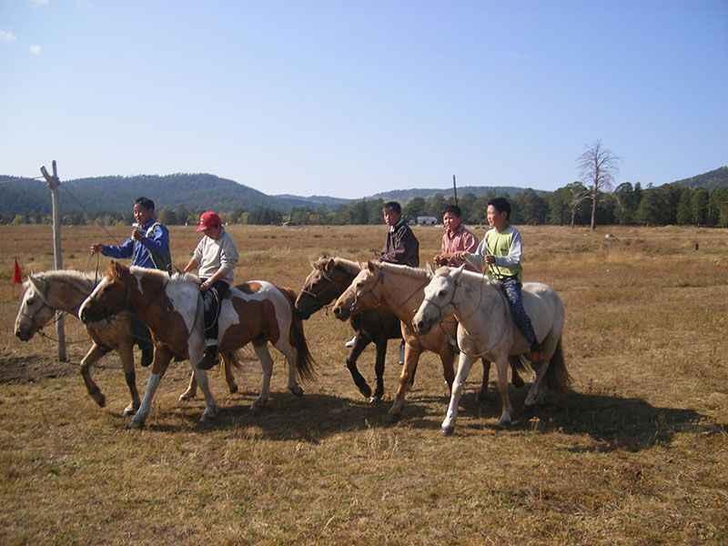 mongolia-horseriders