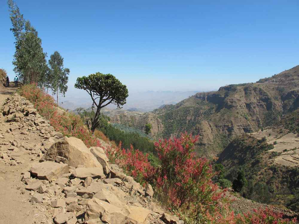 simien-mountains-ethiopia