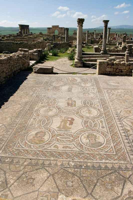 volubilis-mosaics