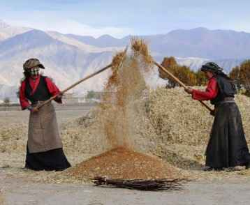 women-winnowing-bhutan