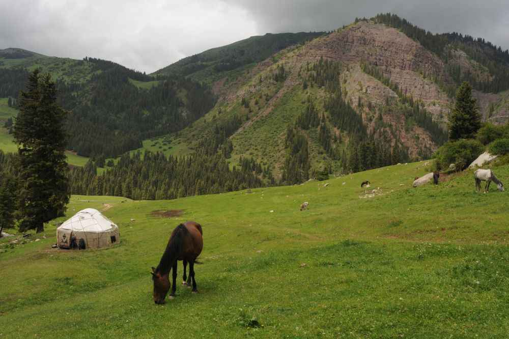 yurt-and-horses-at-chon-kemin-kyrgyzstan