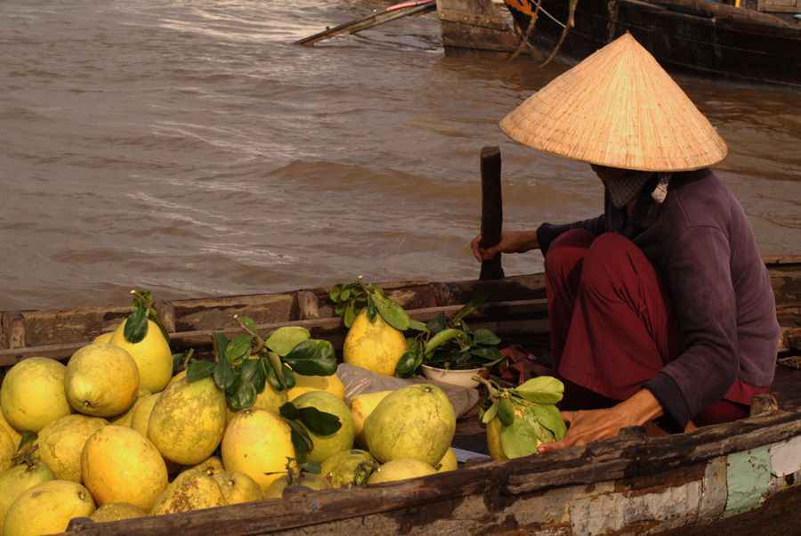 Vietnam market boat