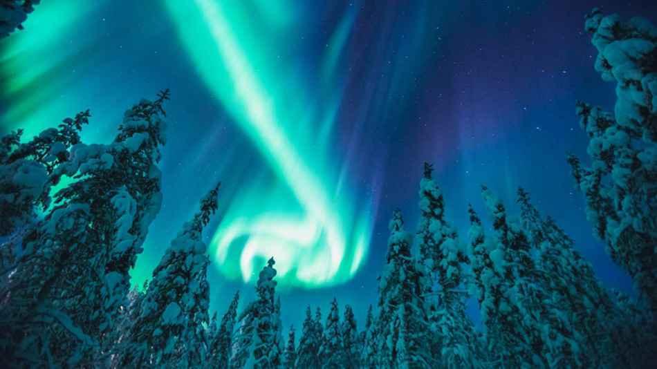 Kakls northern lights