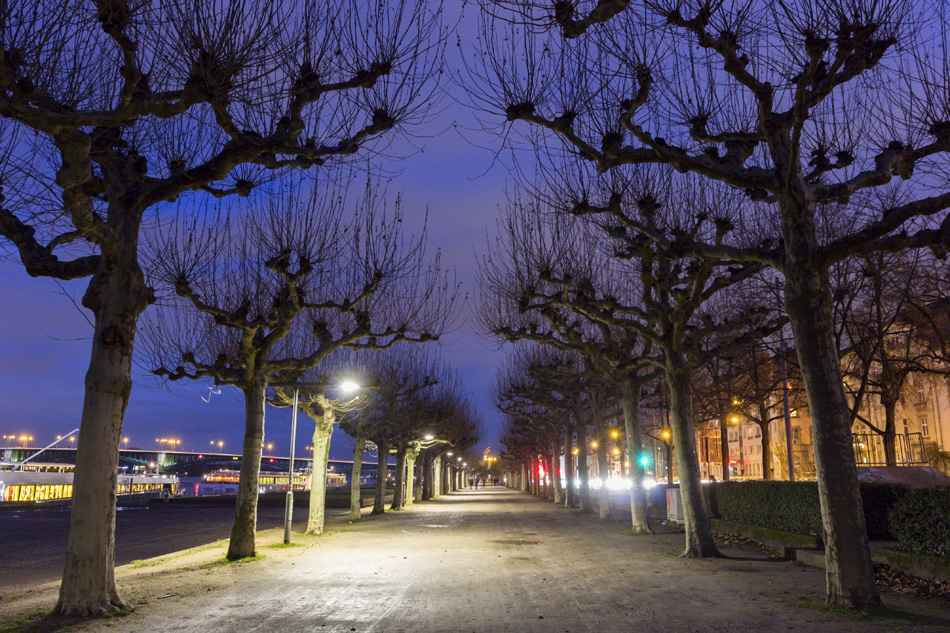Rheinpromenade in Mainz in Germany