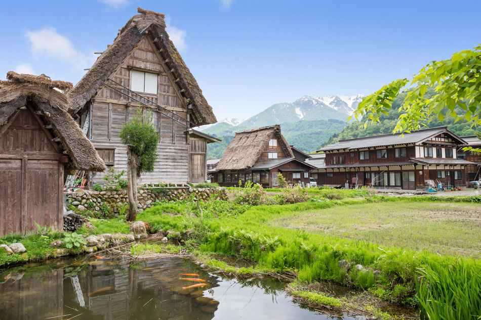 Historical Japanese Village - Shirakawago in spring