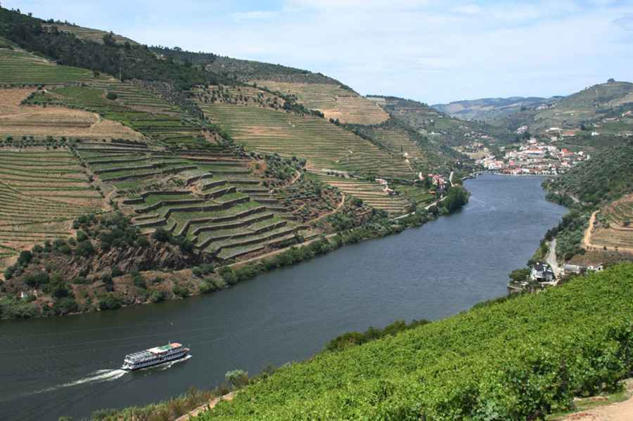 Douro River vineyards