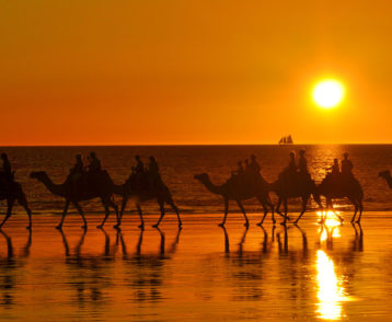 Sunset camel ride at Cable Beach, Broome