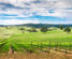 Wine valley in Barossa