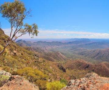 Australian outback and Flinders Ranges
